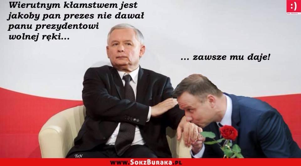 Grafika - Duda iKaczyński